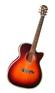 Alvarez Yairi For Sale : alvarez yairi signature wy1ts acoustic electric guitar for sale online ebay ~ Hamham.info Haus und Dekorationen