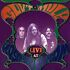 Cassette: Live at Roseland Ballroom by Gov't Mule (Cassette, Oct-1996, Foundation)