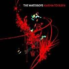 The Waterboys - Karma to Burn (Live Recording, 2005)