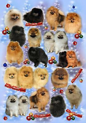 Pomeranian Dog Christmas Wrapping Paper By Starprint