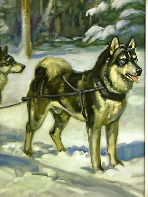 Megargee HUSKY SLED DOG IN SNOW 1953 Art Print Matted ()