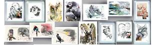Phoenixblick Tierportraits
