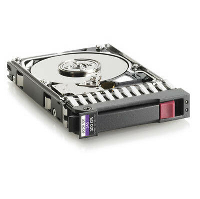 "HP 300GB Internal 10000RPM 2.5"" (507127-B21) HP Reman"