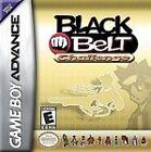 Black Belt Challenge Canceled (Nintendo Game Boy Advance)