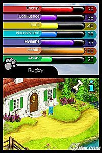 Paws Claws Best Friends   Dogs Cats Nintendo DS, 2007