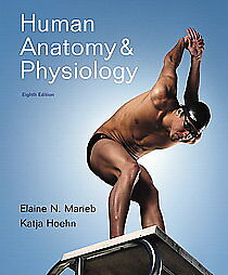 Human-Anatomy-Physiology-by-Katja-Hoehn-Elaine-N-Marieb-and-Elaine-Nicpon