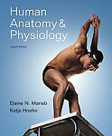 Human Anatomy & Physiology by Katja Hoehn, Elaine N. Marieb and Elaine Nicpon Marieb (2009, Other, Mixed media product) Image