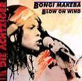 Blow On Wind (2006)