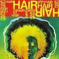 Hair von Musical,Various Artists (1993)
