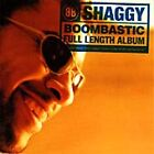 Shaggy - Boombastic (1995)