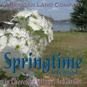 American-Land-Company-Cherokee-Village-AR-Land-Lot-Sale-NR-Real-Estate-c45-1cr