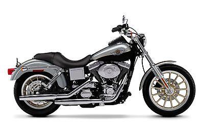 03 Anniv Dyna Gas Tank Stripes Harley Davidson