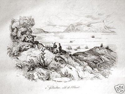 Gibraltar 1834: Schöne Stahlstich-Ansicht Westküste *