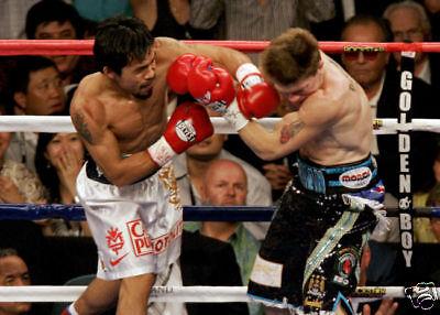 Manny Pacquiao v Ricky Hatton 10x8 Photo