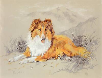 ROUGH COLLIE LASSIE SCOTTISH SHEEPDOG DOG FINE ART LIMITED EDITION PRINT