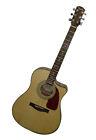 Fishman Dreadnought Acoustic Guitars