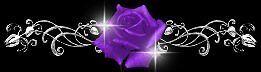 Purple Rose's Fantasy Shop