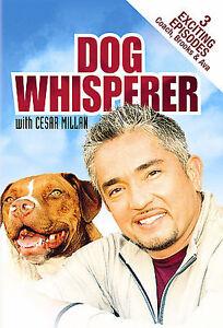 Dog Whisperer with Cesar Millan (DVD) [3 Episodes] ~ New & Factory Sealed!