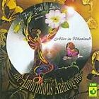 Amorphous Androgynous - Alice in Ultraland (2005)