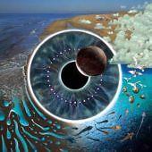 Pink-Floyd-Pulse-NEW-CD