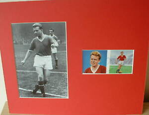 Albert-Quixall-signed-amp-mounted-12-x-10-Manchester-United-COA