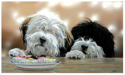 TIBETAN TERRIER TT TIBY DOG FINE ART LIMITED EDITION PRINT