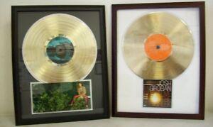 Blank-Gold-LP-Album-Record-Award-Custom-CD-DVD-Display