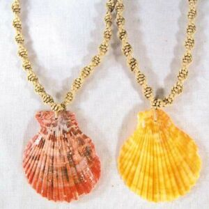 12-FAN-SHELL-HEMP-NECKLACES-001-bulk-seashell-jewelry-new-necklace-shells-bulk