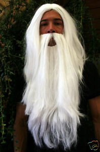 Peruecke-Bart-Set-Zauberer-Gandalf-Dumbledore-Wizard