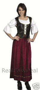 Adult-Lady-Victorian-Wench-Ladies-Costume-Medieval-AC385