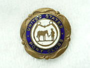 Pony Club Pin