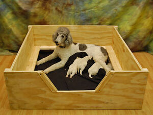 Whelping-Box-40x40-Medium-w-RAILS-Dog-Puppy-Pen-FreeS-H