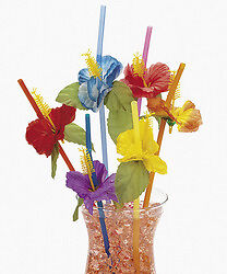 HIBISCUS..... HAWAIIAN TROPICAL LUAU BEACH PARTY STRAWS