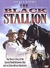 The Adventures of the Black Stallion (DVD, 2011, Canadian French)