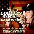 Country Rock-Too Hot To Sleep von Various Artists (2008)