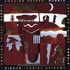 Runrig - Amazing Things (1993)