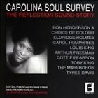 Various Artists - Carolina Soul Survey (2008)