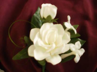 Wedding Gardenia Stephanotis White Or Ivory Boutonniere