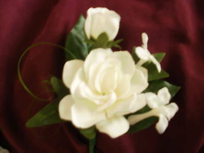 Wedding Gardenia Stephanotis White Or Ivory Boutonniere