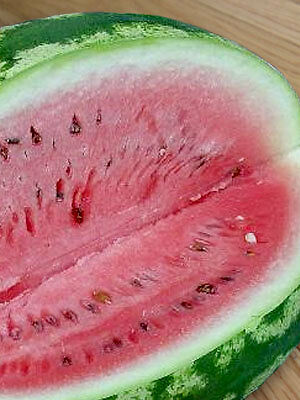 100 Crimson Sweet Watermelon seeds. HEIRLOOM. ***SAME DAY SHIPPING*** on Rummage
