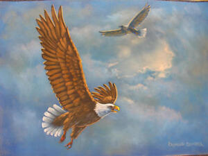 Chalk-Art-DVD-FINE-ARTS-SKIES-EAGLES-by-Ray-Dombeck