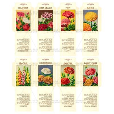 8 Dolls House Flower Seed Packets (set 12)