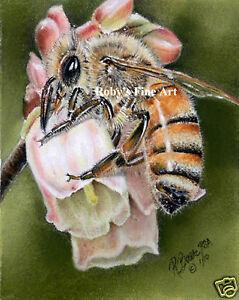 Honeybee-Bee-On-Blueberry-Blossom-Honey-Bee-5x7-Art-Print-by-Artist-Roby-Baer