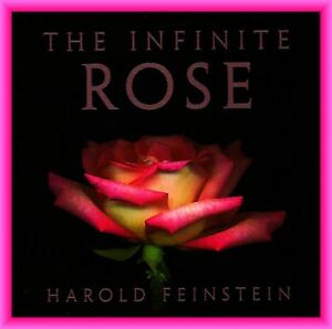 BOOK - ART- Infinite Rose by Photographer Harold Feinstein