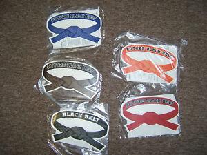 ONE Future Black Belt magnet car locker martial arts BLUE or RED