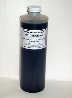 Coyote Urine 1 Pint Quality-- Sale Trapping, Traps Hunting