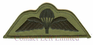 SUBDUED-OG-PARA-WINGS-4-AIRBORNE-PARACHUTE-REGIMENT