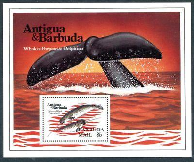 Barbuda Mail 582 586  Mnh  Marine Life  Dolphin  S6667