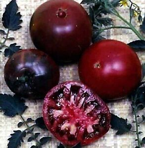 TOMATO-Black-Russian-20-seeds-vegetable-boondle-seeds-garden-UNUSUAL-HEIRLOOM