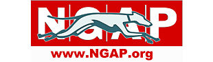 NGAP VETERINARY CLINIC